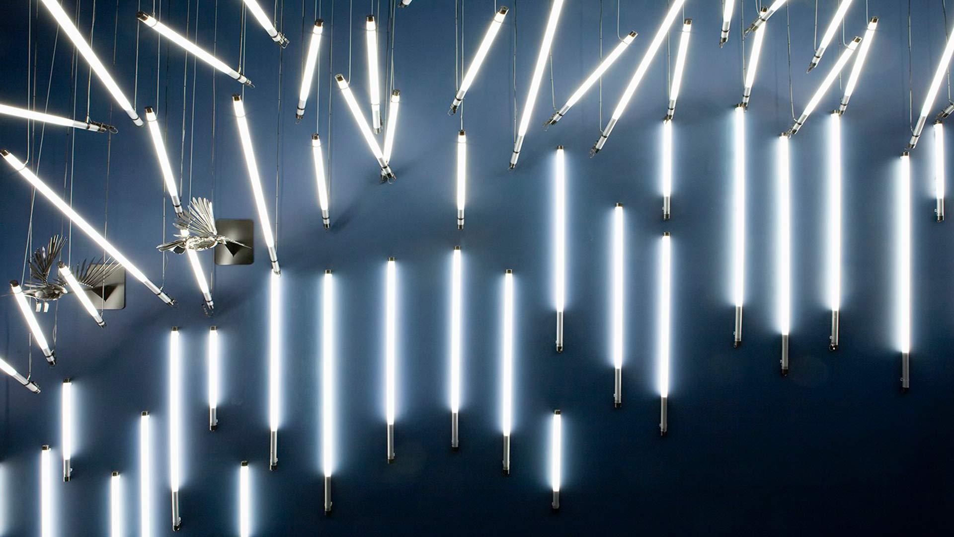 Light Art Showpiece Retail Environment Feature Lighting Nulty