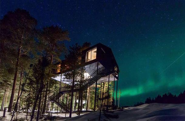 Northern Lights Treehotel Pine Forest Sweden