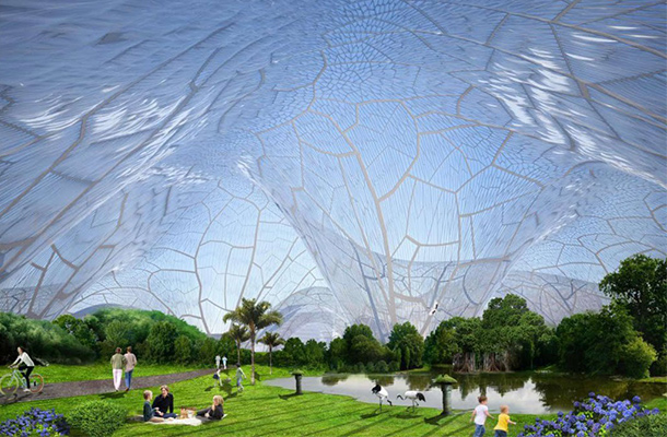 Enclosed Park Daytime Bubbles Orproject Designing By Code