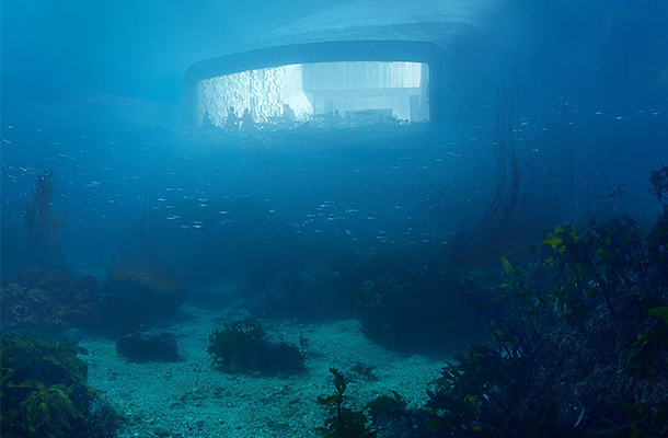 Restaurant Under Water Architecture Seabed Snøhetta