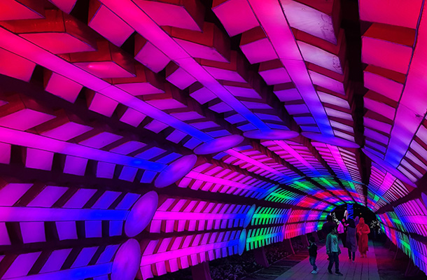 Dubai Garden Glow Colour Changing Tunnel Light Effect