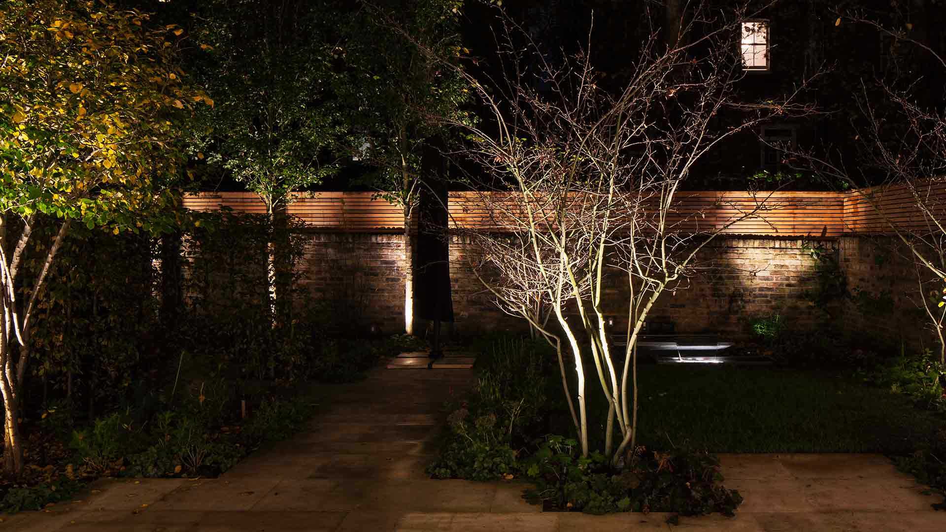 Garden Lighting Scheme London Townhouse Trees Planting Designers Nulty