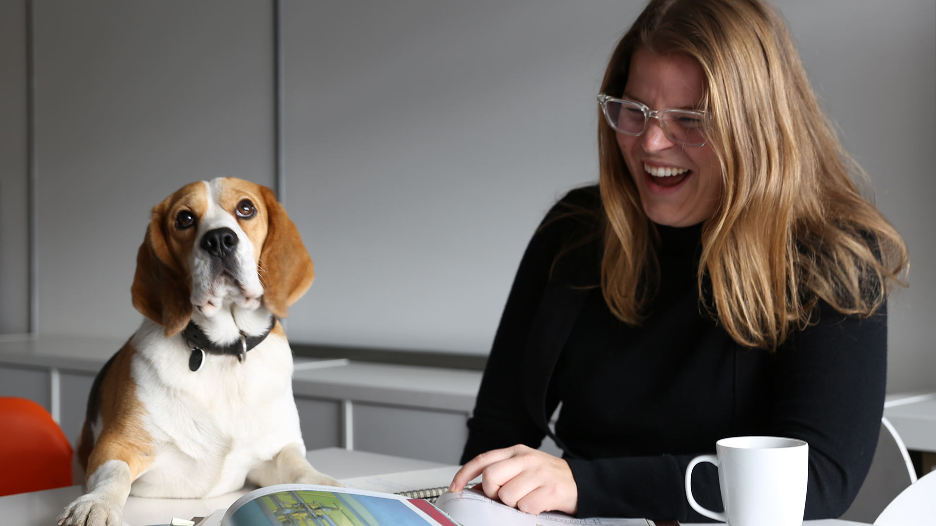 Office Dog Schnorbitz Business Development Sarah Crooks Lighting Design Consultants London Nulty