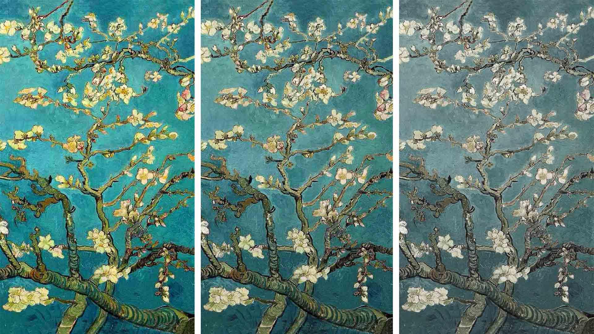 Flower Painting Colour Rendering Comparison Lighting Design
