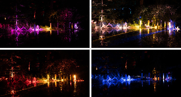 Lights in Alingsås The Pond Köllera Lighting Installation