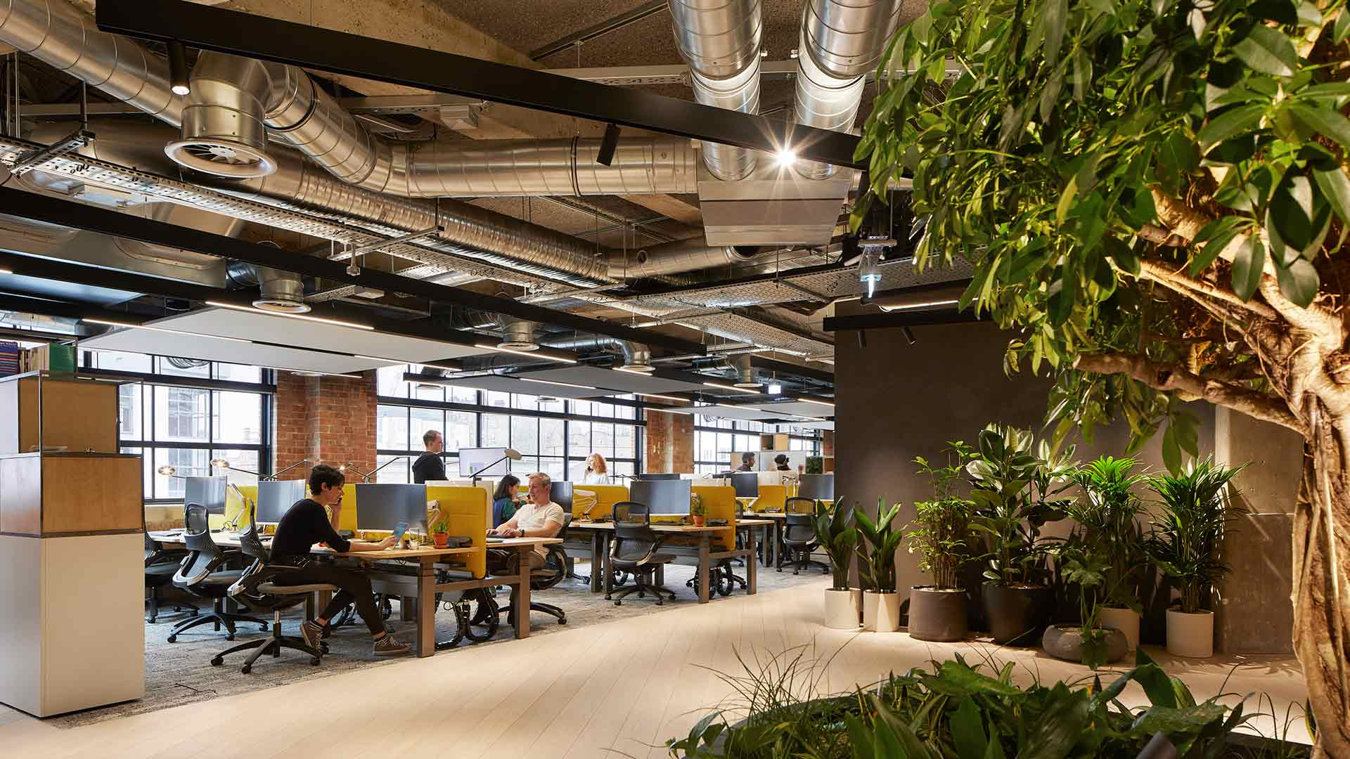 Lighting Scheme Open Plan Office Workstations Diffused Linear Ceiling Lights Track Spotlight System Industrial Architecture Exposed Services Lighting Design Consultants Nulty